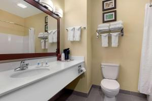 A bathroom at Comfort Inn Willow Springs