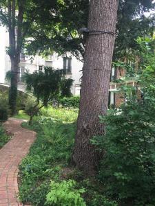 A garden outside Eden Lodge Paris