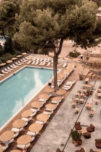 Ein Blick auf den Pool von der Unterkunft Cook's Club Palma Beach oder aus der Nähe