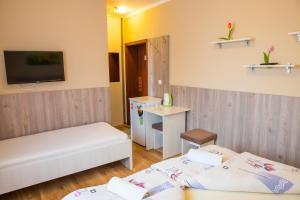 Televízia a/alebo spoločenská miestnosť v ubytovaní Penzión Stefarez New