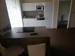 Kuchyň nebo kuchyňský kout v ubytování Penzion Andy