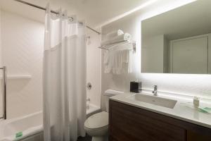 A bathroom at Holiday Inn Orlando SW – Celebration Area, an IHG Hotel