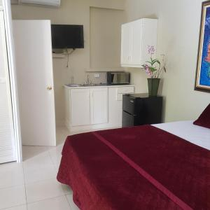 A kitchen or kitchenette at Orchid Cottage