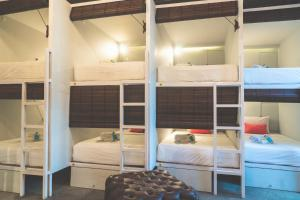 A bunk bed or bunk beds in a room at Socialista Lifestyle Hostel