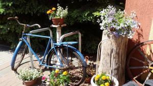 Rowery dostępne w obiekcie Hotel Kopernik lub w pobliżu