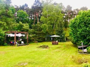 Ogród w obiekcie Nadmorski Las