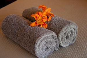 Spa and/or other wellness facilities at Byron Motor Lodge Motel