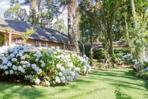 A garden outside Pousada Pinhão e Poesia