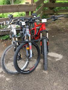 Катание на велосипеде по территории Hotel Restaurant au Floridor или окрестностям