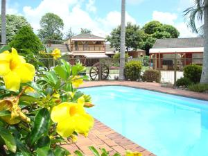 The swimming pool at or close to Alstonville Settlers Motel