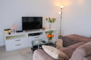 TV a/nebo společenská místnost v ubytování Apartment Petar