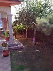 A garden outside Despertar con el sonido de los pajaros
