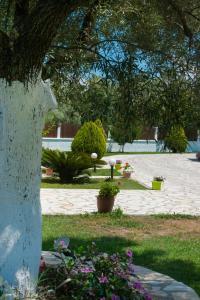 Giardino di Eleana Studios