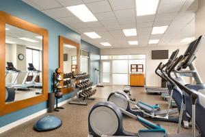 Palestra o centro fitness di Embassy Suites Boston at Logan Airport