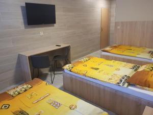 TV a/nebo společenská místnost v ubytování Penzion Hudebka