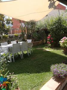 A garden outside Casa Tartaruga