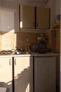 A kitchen or kitchenette at Apartments Belenum