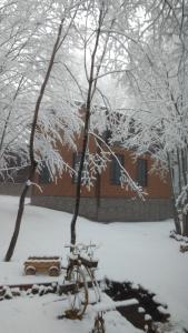 База отдыха Благодать зимой
