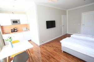 A television and/or entertainment centre at Zollikof Aparts - Sauna & Studioapartments