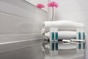 A bathroom at Hotel Olympia Universidades
