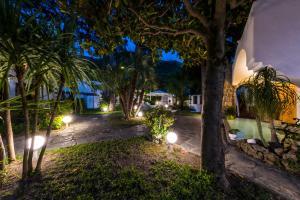 A garden outside Ischia Dream Sunset