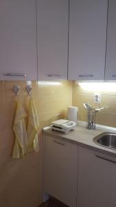 Koupelna v ubytování Apartman Lucijan