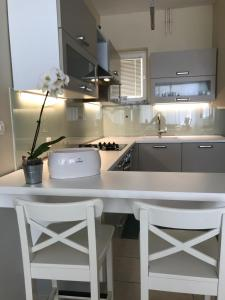 A kitchen or kitchenette at Apartment Francos