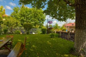 A garden outside Pension Verona Centru