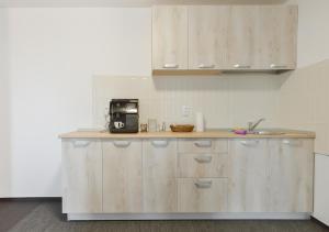 A kitchen or kitchenette at Pension Verona Centru
