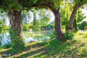 A garden outside PARADISE CHALLETS AND CAMPING