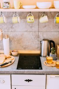 Kuchnia lub aneks kuchenny w obiekcie Czarna Owca