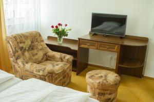 TV a/nebo společenská místnost v ubytování Penzion Pomnenka