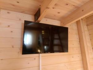 Telewizja i/lub zestaw kina domowego w obiekcie Nowe Domki Pod Lipami