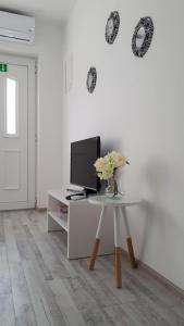 TV o dispositivi per l'intrattenimento presso Apartman Lidija