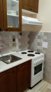 Kuchyň nebo kuchyňský kout v ubytování Penzion Monika