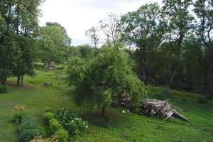 A garden outside Nyx & Iris