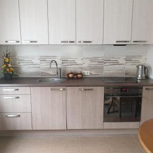 Virtuve vai virtuves aprīkojums naktsmītnē Apartamenti Danna