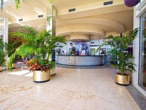 El vestíbulo o zona de recepción de Hotel Servigroup Papa Luna