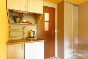 Kuchnia lub aneks kuchenny w obiekcie OW Diana