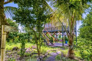 Jardin de l'établissement La Bambouseraie