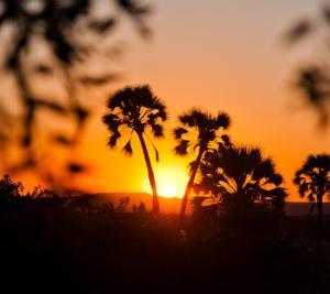 Lever ou coucher de soleil vu de le lodge ou à proximité