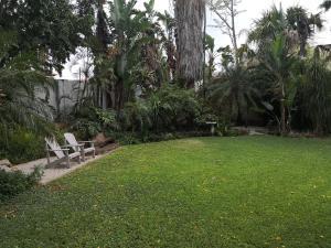 A garden outside The Embassy