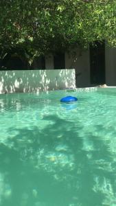 The swimming pool at or near Portal de la Marquesa