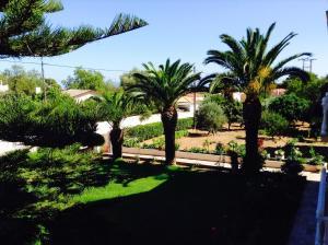 A garden outside Villa Remno