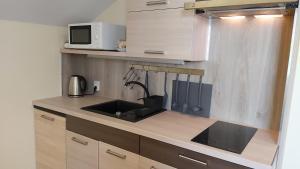 Kuchyňa alebo kuchynka v ubytovaní Vila Gilė