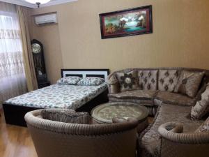 Uma área de estar em Baku white city big apartmant