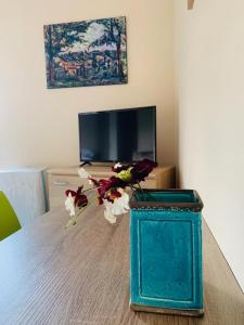 A television and/or entertainment center at Brickyard Apartments Cluj