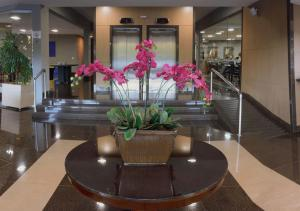 The lobby or reception area at Garden Hotel