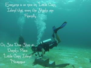 Snorkelen en/of duiken bij het hotel of in de buurt