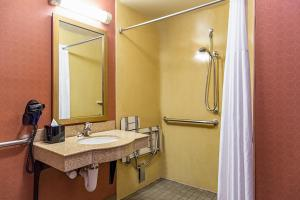 A bathroom at Hampton Inn Majestic Chicago Theatre District